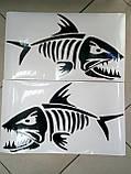 Виниловые наклейки СКЕЛЕТ РЫБЫ  24х14 см  2 цвета, фото 2