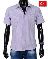 Стильная мужская рубашка в тонкую полоску.