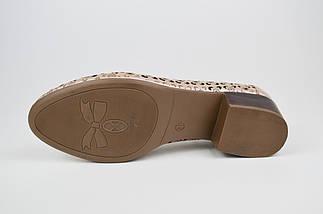 Туфлі літні бежеві шкіряні Euromoda 143 36 розмір, фото 3