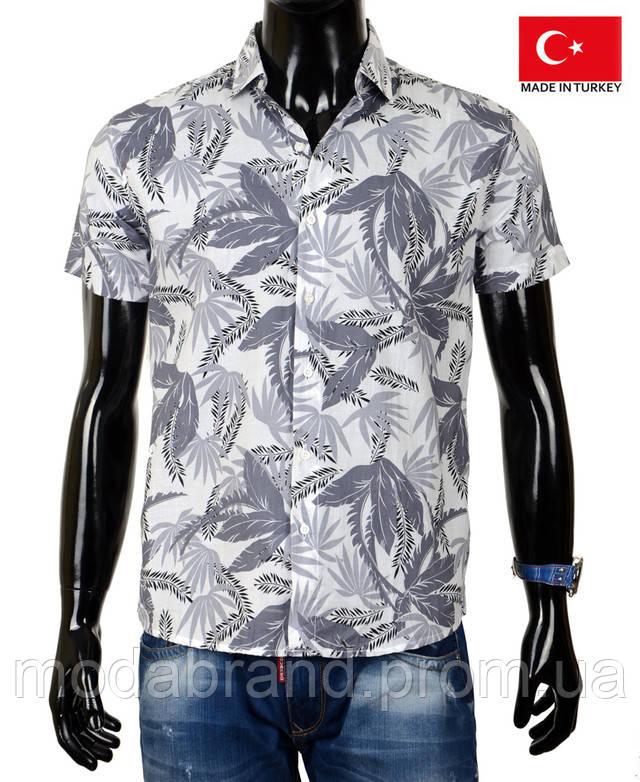 Стильная мужская рубашка -гавайка для пляжа и лета из хлопка ... de7c03d8ac8