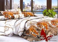 Полуторный комплект постельного белья с Тиграми, Поликоттон