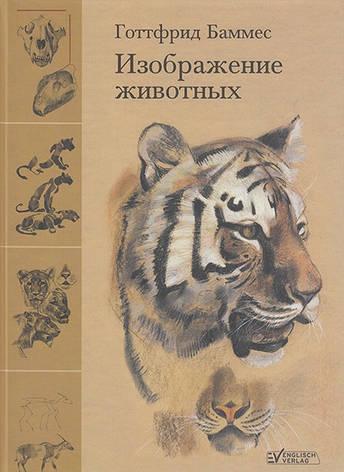 Изображение животных Готтфрид Баммес, фото 2