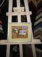 Картина бисером Стрекоза (Чаривна мыть)