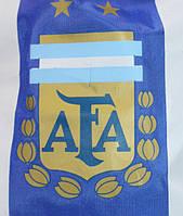 Рюкзак с символикой футбольного клуба