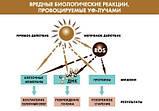 Institut Esthederm Солнцезащитный крем от морщин, для кожи лица INTO REPAIR,50 мл, фото 6