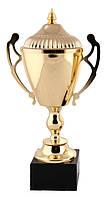Кубок Коллада золото (3-е место)