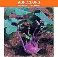 Азур семена капусты кольраби Semo 2 500 семян