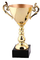 Кубок чаша золото (2-е место)