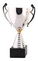 Кубок чаша серебро (3-е место)