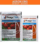-Ревус Топ 500 ЕС фунгицид для захисту томатів та картоплі від фітофторозу, альтернаріозу Syngenta