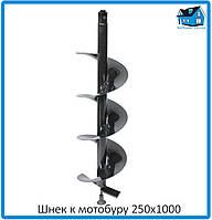 Шнек к мотобуру 250x1000