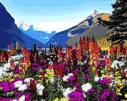 Картинa по номерам 40×50 см. Горные цветы