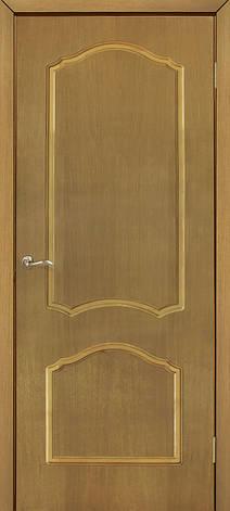 """Дверное полотно шпон Каролина """"ПГ"""" ДНТ, фото 2"""