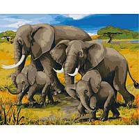 Картина по номерам на холсте Семья слонов, KHO2464