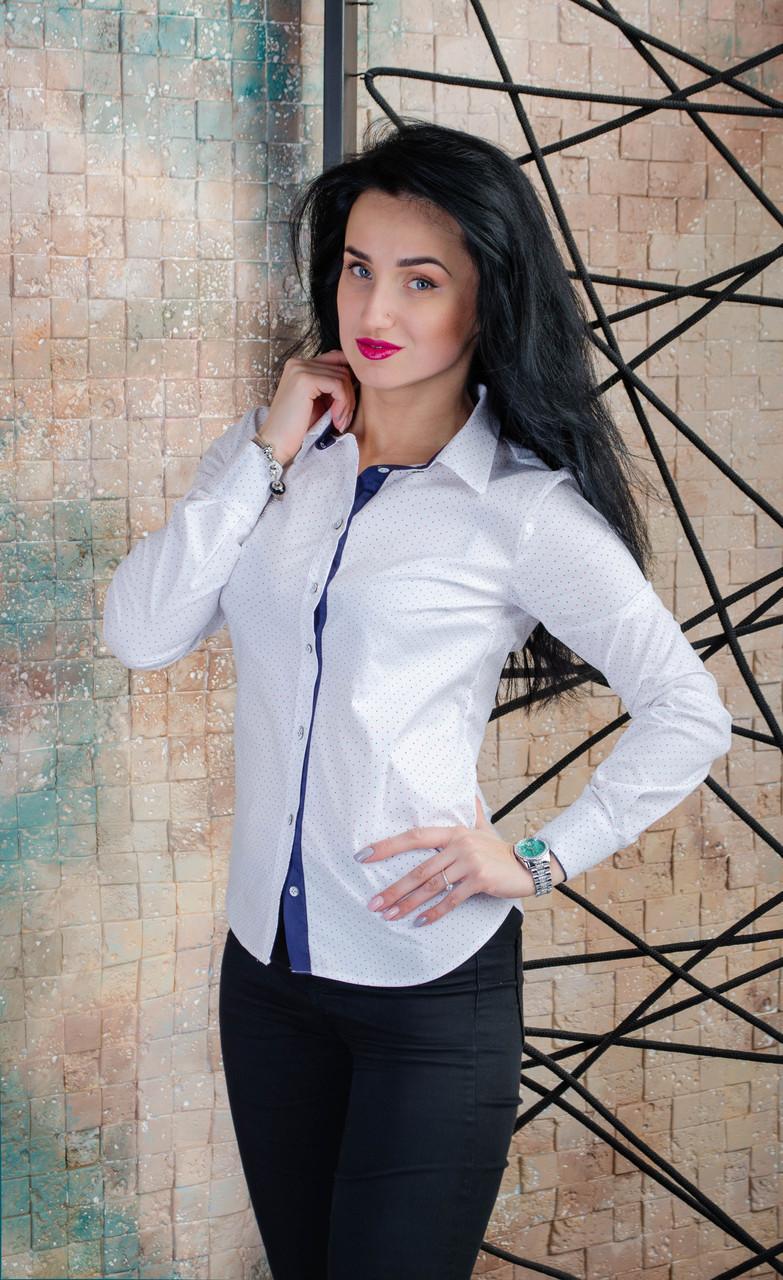 eb75b758ff6a Белая женская рубашка с длинным рукавом размер 42,44,46,48,50, цена ...