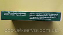 Энвайр - таблетки от глистов для собак Артериум, фото 3