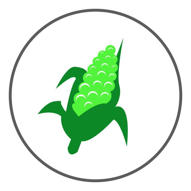 Кукурудза - насіння