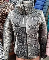6cfc2200027b7 Женская демисезонная куртка батал оптом в Украине. Сравнить цены ...