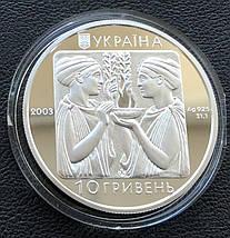 Бокс Срібна монета 10 гривень срібло 31,1 грам, фото 3