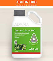 Голтікс Голд гербицид для захисту посівів цукрового буряку Адама 5 л, фото 1