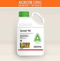 Зумер КС гербицид широкого спектру дії Адама 10 л, фото 1