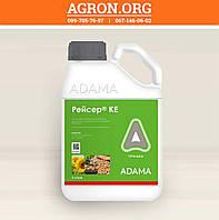 Рейсер КЕ гербицид по посівах соняшнику нуту картоплі та моркви Адама 5 л, фото 1