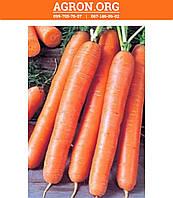 АГХ (AGX) 005 F1 семена моркови Нантская Agri Saaten 25 000 семян, фото 1