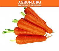 Абако F1 (Abaco F1) семена моркови  1.8 - 2.0 мм Seminis 100 000 семян, фото 1