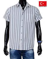 Модная мужская летняя рубашка из натурального хлопка.