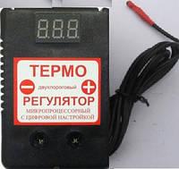 Цифровой регулятор температуры ЦТР-2 на два уровня температуры