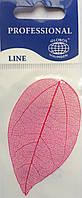 Листья высушенные  для дизайна ногтей RENEE IF03-05