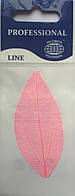 Листья высушенные  для дизайна ногтей RENEE IF03-04