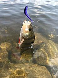 Список ютуб-каналов о рыбалке. 14 популярных блогеров
