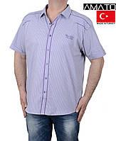 Мужская рубашка на короткий рукав в клетку,сиреневая.