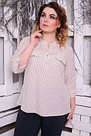 Блуза Виктория горох, фото 1