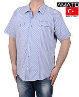 Тенниски мужские Турция.Большие размеры.
