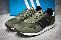 Кроссовки мужские Adidas  Haven, хаки (12324) размеры в наличии ► [  43 (последняя пара)  ], фото 1