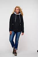 Куртка большие размеры цвет черный Адриен