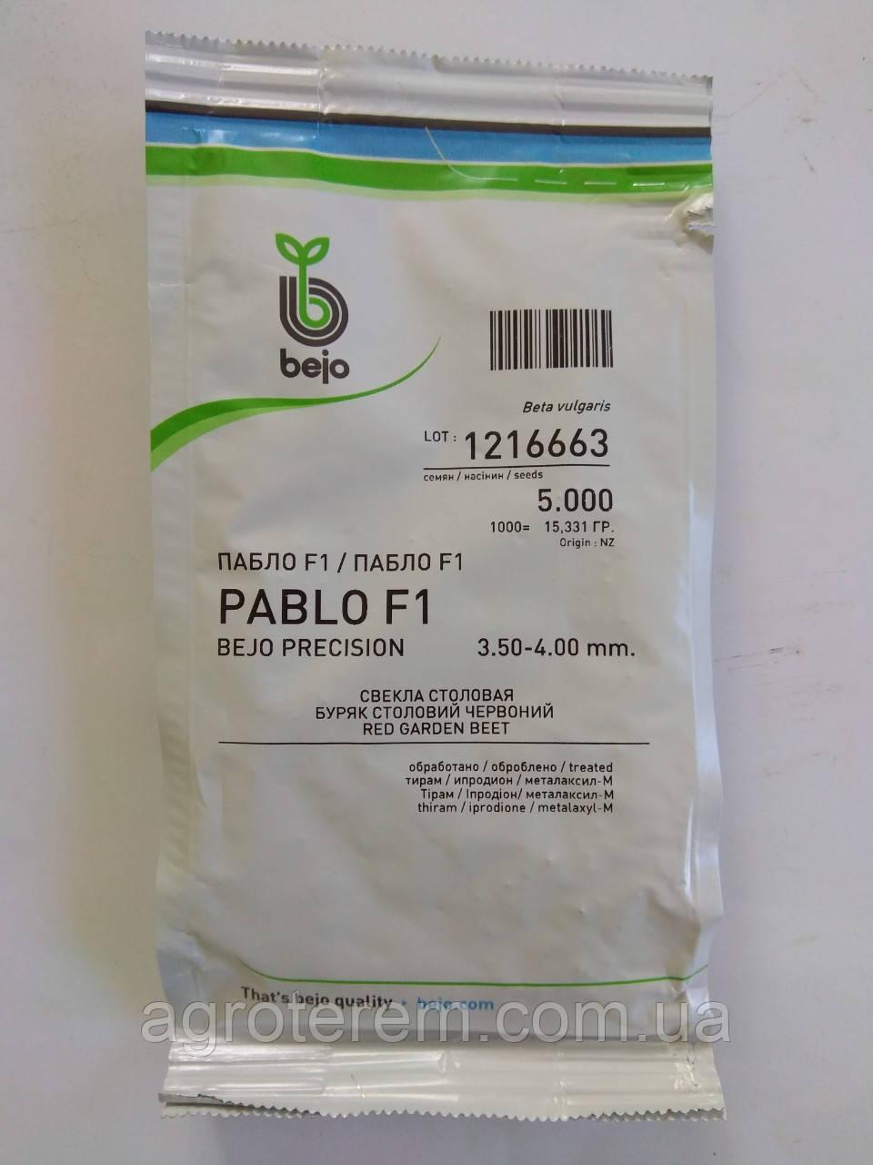 Свекла Пабло PABLO F1 5000с
