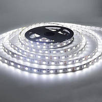 LED стрічка для освітлення 5050-5630 10мм