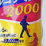 Глюкозамин Хондроитин Премиум. Курс на 20 дней - 120 шт. (DHC, Япония), фото 2