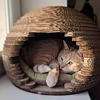Когтеточка Домик для Кота 28 х 45 см Когтедралка Царапка Корзина Лежак для Кошки. Звоните!