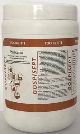 Средство дезинфекции   Госписепт (гранулы) Бланидас - 1 кг., фото 2