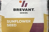 Семена подсолнечника П64ГЕ133