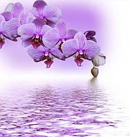 Фотоплитка  Орхидея фиолетовая. Панно на керамической плитке.
