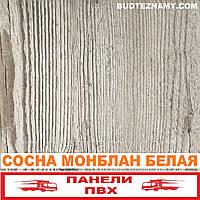 Панель пластиковая (ПВХ) Сосна Монблан Белая (ламинированная) Decomax, 250х2700х8 мм.