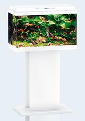 Аквариум прямоугольный небольшой JUWEL (Джувел) PRIMO 70 LED, белый 70 литров