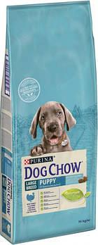 Сухой корм Dog Chow Puppy Large Breed для щенков крупных пород с индейкой, 14 кг