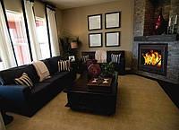 Камины отопительные, воздушное отопление от камина, камин для дома. Топка Professional (дверца Verto) 18 кВт