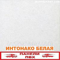 Панель пластиковая (ПВХ) Интонако Белая (ламинированная) Decomax, 250х2700х8 мм.